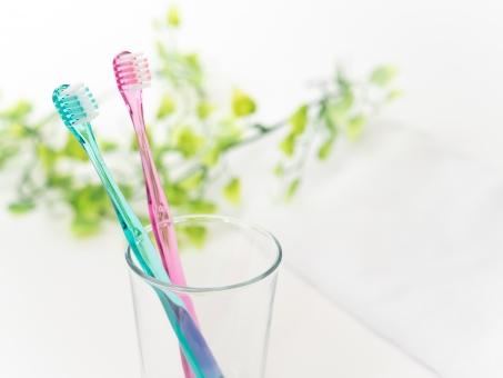 むし歯の原因|仙台市青葉区の山下歯科クリニック